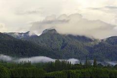 Widok mangrowe i wzgórze chmurzył Obrazy Stock