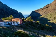 Widok Masca wioska z palmami i górami, Tenerife, wyspy kanaryjskie obrazy stock