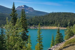 Widok Medycyna jezioro, Kanada zdjęcie stock