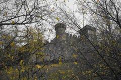 Widok między gałąź kasztel fenis d ` val aosta Italia w jesieni Obrazy Royalty Free