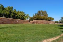 Widok miasto ściana w Lucca Włochy zdjęcie royalty free