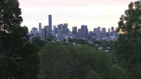 Widok miasto przez drzew z wczesnego poranku birdsong zbiory