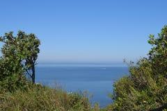 Widok morze od niektóre krzaków Obraz Stock