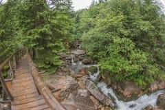 Widok most - fisheye wykoślawienie Zdjęcie Royalty Free