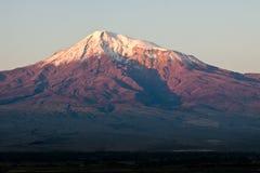 Widok na Ararat górze. Zdjęcie Royalty Free