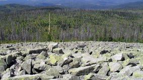 Widok na Bawarskim lesie z wierzchu Lusen góry Obraz Royalty Free