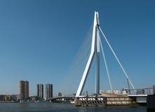 Widok na Erasmus moscie, Rotterdam, holandie Obraz Stock