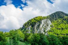 Widok na g?rze z lasem na nim i chmurnym niebie zdjęcie stock