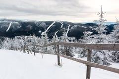 Widok na halnym Krkonose i świerczyny w śniegu Obraz Stock
