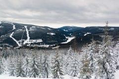 Widok na halnym Krkonose i świerczyny w śniegu Zdjęcia Stock