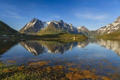Widok na krajobrazie w Lofoten wyspach Zdjęcie Stock