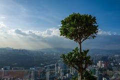 Widok na Kuala Lumpur linii horyzontu od KL wierza obrazy royalty free