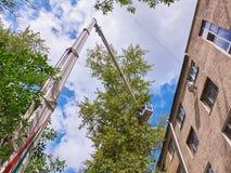 Widok na miasto usługowej windy dźwigowej maszynie na budynku dachu wysokości z pracownikami ciie wierzchołki dotyka budynek drze zdjęcia royalty free