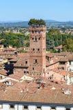 Widok na mieście od Torre delle Rudny zegarowy wierza w Lucca Włochy zdjęcia royalty free