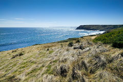 Widok na ocean na Phillip wyspie, Australia Obraz Royalty Free