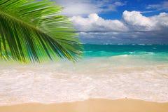 Piękna tropikalna plaża z jasnym oceanem. Fotografia Royalty Free
