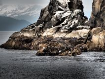 Widok na ocean skały Obraz Stock