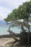Widok na ocean w Indonezja Zdjęcie Royalty Free