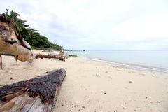 Widok na ocean w Indonezja Obraz Royalty Free