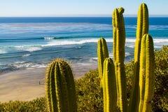 Widok Na Ocean w Południowym Kalifornia Obraz Royalty Free