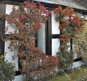 Widok na okno stary anglika dom Fotografia Royalty Free