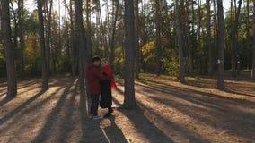 Widok na pary obejmowaniu w sosnowym lesie w zmierzchu świetle z góry Kochająca międzyrasowa para datę i uściśnięcia zbiory wideo
