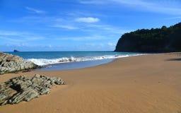 Widok na tillet plaży w Guadeloupe fotografia royalty free