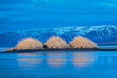 Widok na trzy diunach i ich odbiciach na zamarzniętym morzu Iceland Zdjęcia Stock