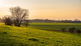 Widok nad drzewami, pola i łąki w wieczór słońcu obrazy stock