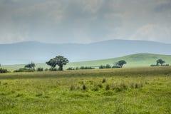 Widok nad Ngorongoro kraterem, Tanzania, Afryka Wschodnia (UNESCO świat Zdjęcia Stock