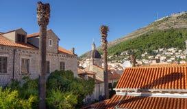 Widok nad pięknym starym grodzkim Dubrovnik, szczytowym Srd i katedrą, obraz royalty free