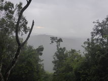 Widok nad tropikalnym lasem deszczowym Obrazy Stock