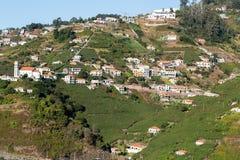 Widok nad winnicami Madera Wino Firma, Estreito De Camara de Lobos, madera obraz stock