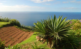 Widok nad wybrzeżem Azores Zdjęcia Royalty Free