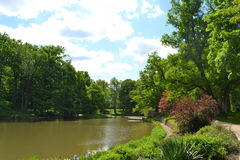 Widok Naturalny park Obraz Royalty Free