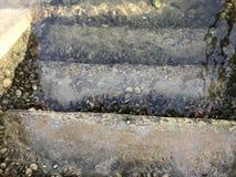 Widok niektóre schodki który nawadnia spadek w oceany i skały na Galicia Hiszpania obraz royalty free