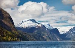 Widok Norweski fjord Fotografia Stock
