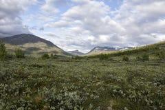 Widok Norweski park narodowy Zdjęcie Stock