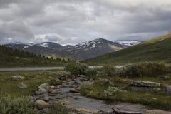 Widok Norweski park narodowy Zdjęcia Stock