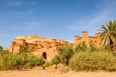 Widok oaza pod Ait Ben Haddou fortecą Obraz Stock