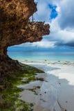 Widok ocean na wyspie Zanzibar Obraz Royalty Free