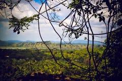 Widok od świątyni Dambulla Sri Lanka fotografia stock