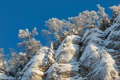 Widok od dna do góry Zima, Rosja Urals Obraz Royalty Free
