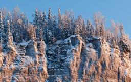 Widok od dna do góry Zima, Rosja Urals Obrazy Stock