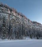 Widok od dna do góry Zima, Rosja Urals Zdjęcie Royalty Free