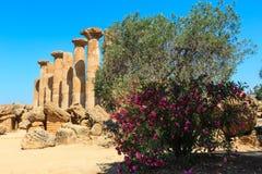 Widok od doliny świątynie, Agrigento, Sicily, Włochy Obrazy Royalty Free
