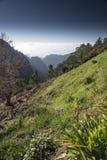 Widok od Eira robi Serrado maderze Portugul Zdjęcie Royalty Free