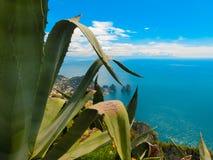 Widok od falezy na wyspie Capri, Włochy i skały w morzu, Obrazy Stock