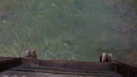 Widok od halnej rzeka mostu wioski pięknego krajobrazu zdjęcie wideo