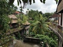 Widok od hotelu na Blai Ubud zdjęcie stock